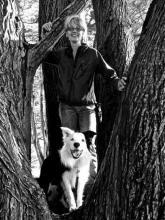 Leanne Neufeld Sirius Dog Training