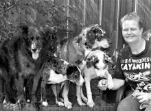 Sirius Instructors Sirius Dog Training